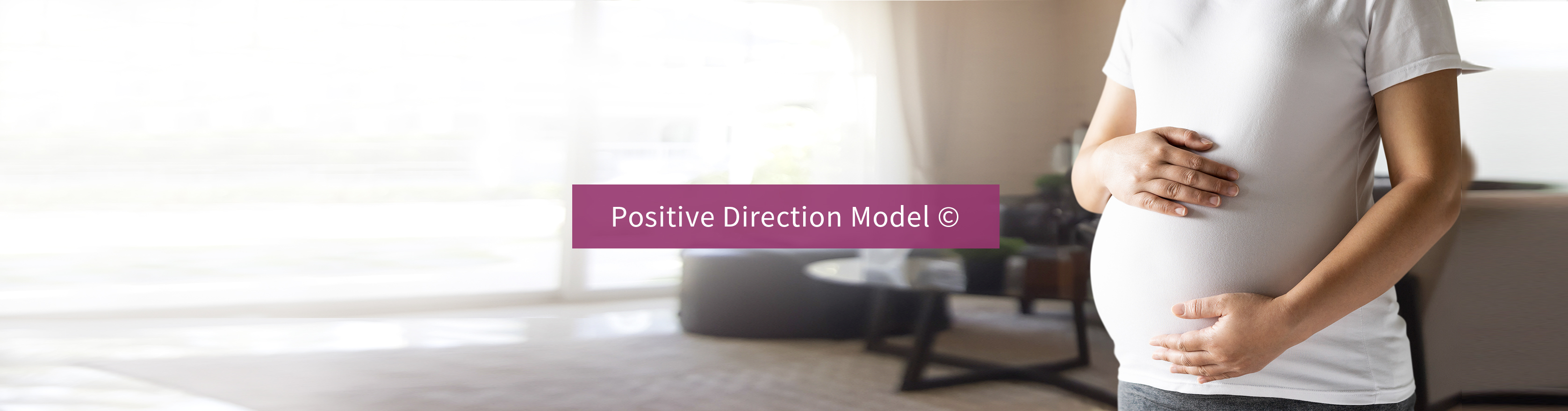 Positive Direction Model - Pregnancy additction